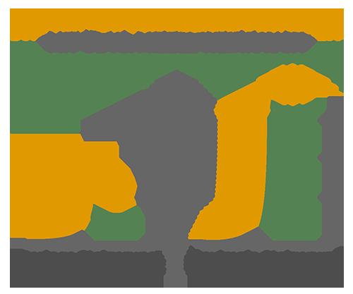 Erhöhung der Bioverfügbarkeit von Weihrauch mit Öl und Mizellen